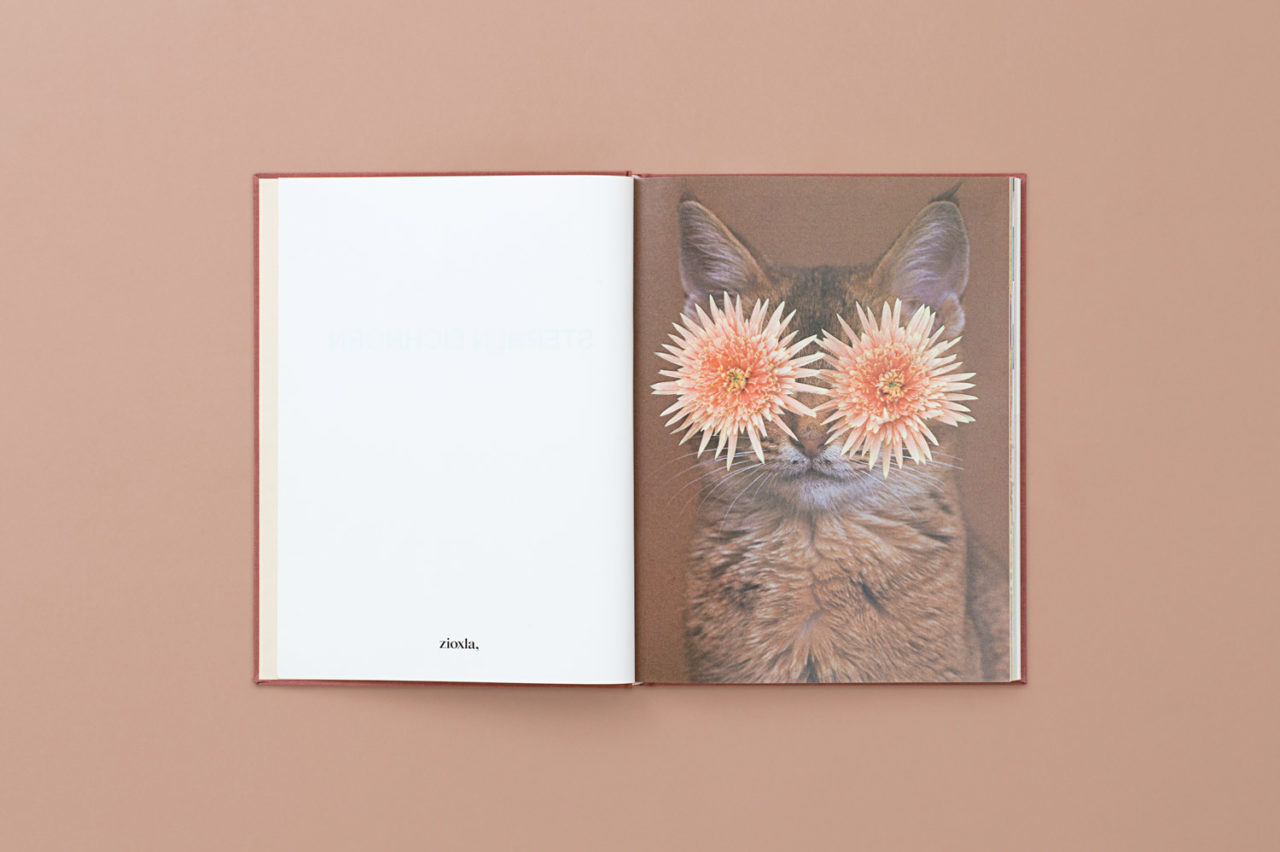 Cats & Plants by Stephen Eichhorn5