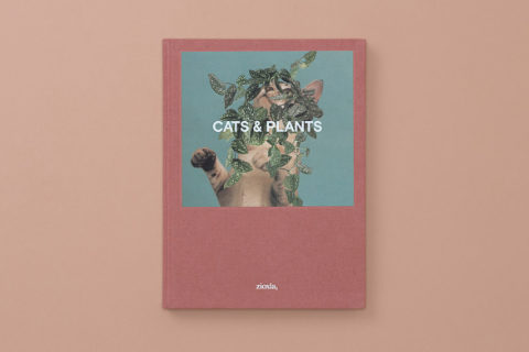 Cats & Plants by Stephen Eichhorn_TB