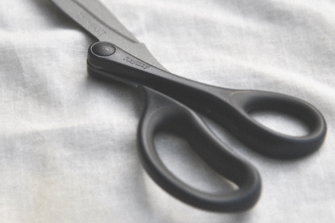 Raymay Swingcut Scissors